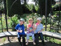 3 little monkey's at the rose garden.