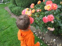 John practicing his breathing on the roses.
